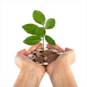 Donate Seedling in Coins in Hands